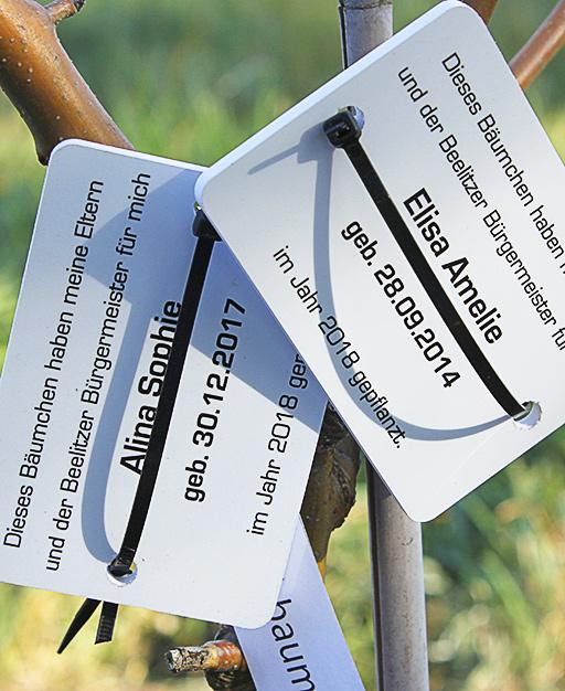 Schilder bei gepflanzten Bäumen
